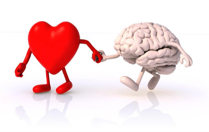 9f62d78e58 A szív szerelmes vagy az agy? - IgenÉlet.hu