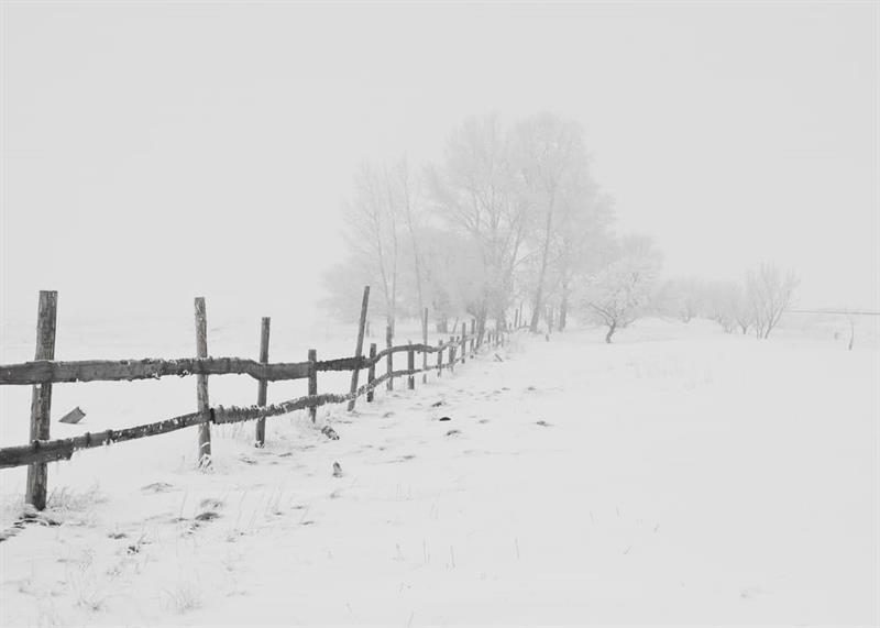 Az este verse - Ady Endre: A téli Magyarország
