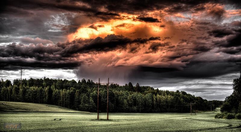 Az este verse - Ady Endre: Emlékezés egy nyár-éjszakára