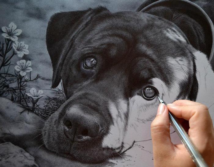 Kutyát tolláról