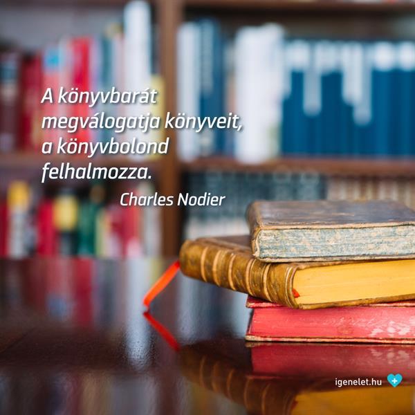 Nem mindegy, hogy könyvbarát vagy könyvbolond!