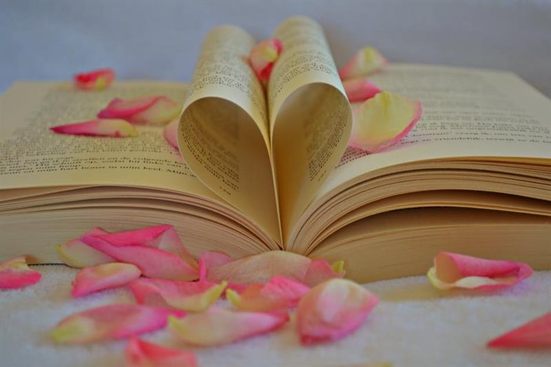 Pasikalauz - Kis útikönyv a férfi szívéhez (3.)
