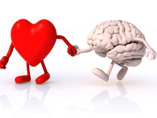 A szív szerelmes vagy az agy?