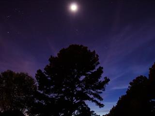 Az este verse - Babits Mihály: Példa a holdvilágról