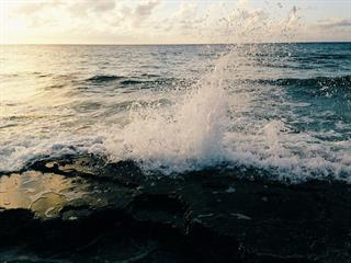 Az este verse - Kányádi Sándor: A tenger