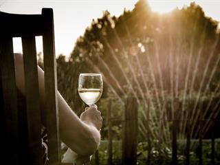 Az este verse - Kosztolányi Dezső: A nyár