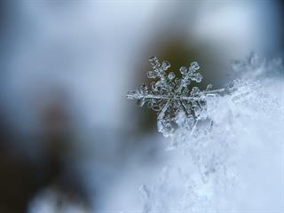 Az este verse - Weöres Sándor: Téli vihar
