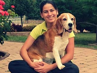 Ép kutyatestben ép kutyalélek - kutyamasszázs az egészségért