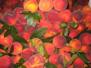 Megérdemelnénk a lédús, hazai gyümölcsöt!