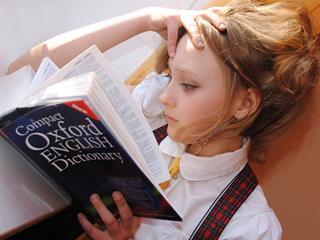 Munkakeresés, ügyintézés bizonytalan nyelvtudással - egy külföldön új életet kezdő egyedülálló nő naplója 6. rész