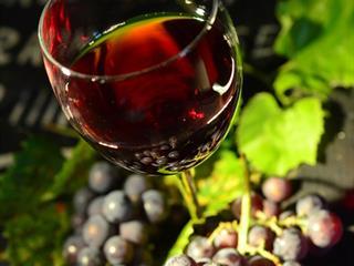 Musttól édes a szeptember – Itt a szüret, irány a szőlő!