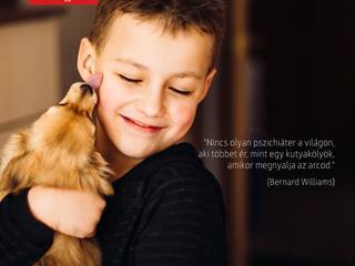 Nem kell pszichológus, ha van kutyád!