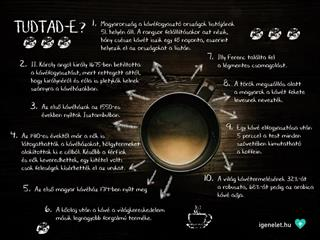 Tudtad? 10 pontban a kávéról (Felidéző)