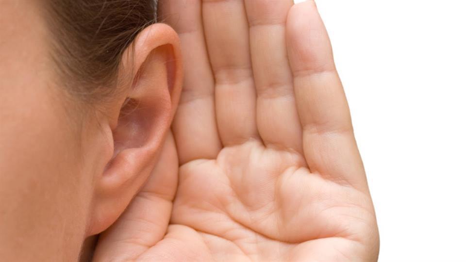Neked milyen füled van?